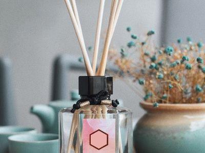 Parfumuri Casa / Auto