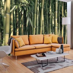 Fotótapéta - Bamboo Exotic