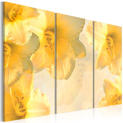Kép - Delicate lilies in a shade of yellow