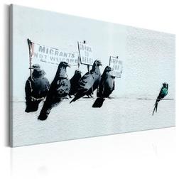 Kép - Protesting Birds by Banksy