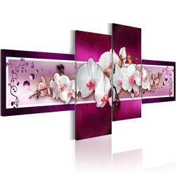 Kép - Romantic orchids