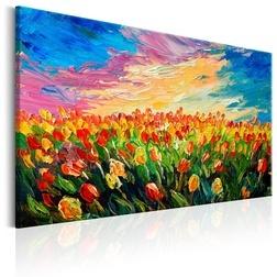 Kép - Sea of Tulips