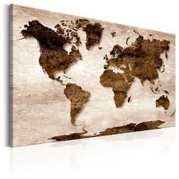 Kép - World Map: The Brown Earth