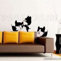 Szimpatikus macskák
