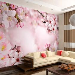 Fotótapéta - Spring Cherry Blossom