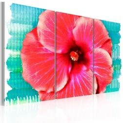 Kép - Hawaiian flower - triptych
