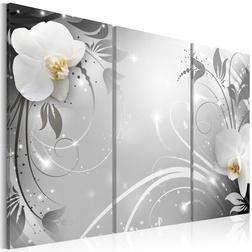 Kép - Platinum waltz