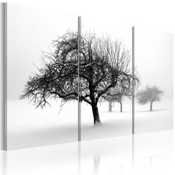 Kép - Trees submerged in white