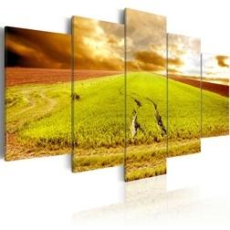 Kép - Wheels traces on a field