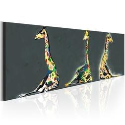 Kép - Colourful Giraffes