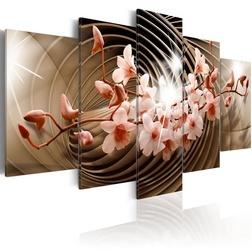Kép - Desert Spiral