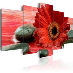 Kép - Gerbera flower and Zen stones