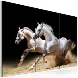 Kép - Horses- power and velocity