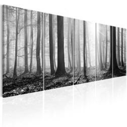 Kép - Monochrome Forest