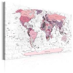 Kép - Pink Frontiers