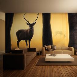 XXL Fotótapéta - Deer in his natural habitat
