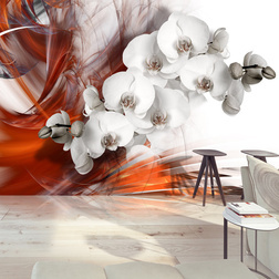 Fotótapéta - Orchid on fire II