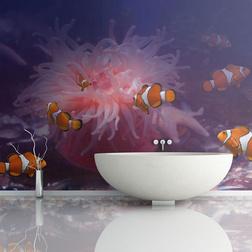 Fotótapéta - Tropical fishes