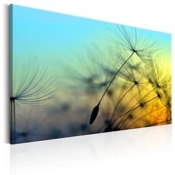 Kép - Ballad of the Wind