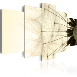 Kép - Delicate dandelion petals