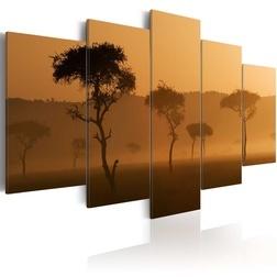 Kép - Fog over a savannah