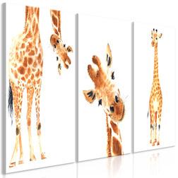 Kép - Funny Giraffes (3 Parts)