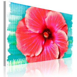 Kép - Hawaiian flower