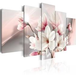 Kép - Magnolia in bloom