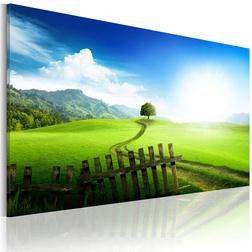 Kép - Path of destination