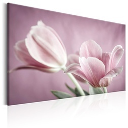 Kép - Romantic Tulips