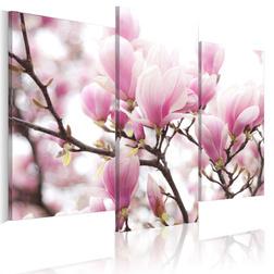Kép - Springtime garden
