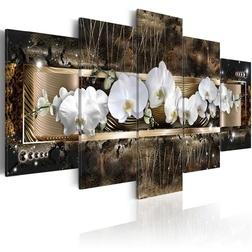 Kép - The dream of a orchids