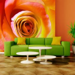 Fotótapéta - Desert Rose