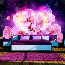 Fotótapéta - Orchids in flames