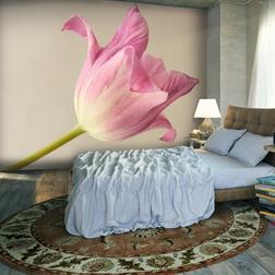Fotótapéta - Pink tulip