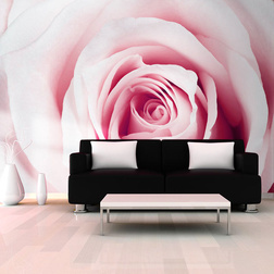 Fotótapéta - Rose maze