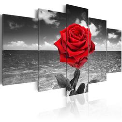 Kép - Colour of love