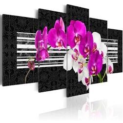 Kép - Modest orchids