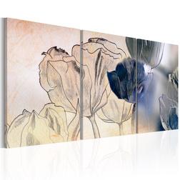Kép - Sketch of Tulips