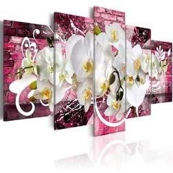 Kép - Variation about the orchids