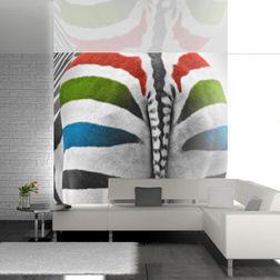 Fotótapéta - Színes zebra