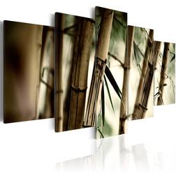 Kép - Asian bamboo forest