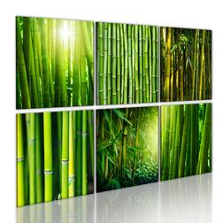 Kép - Bamboo has many faces