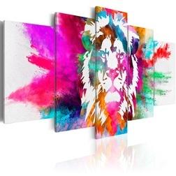 Kép - Colours of the King