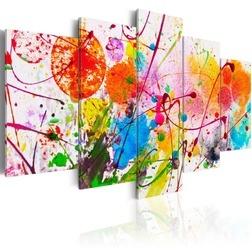 Kép - Summer of Colours