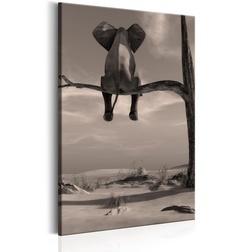 Kép - Elephant in the Desert