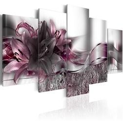 Kép - Purple Sash