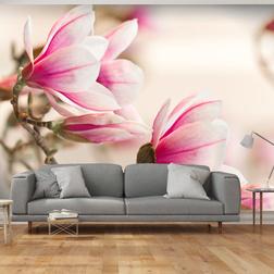 Fotótapéta - Branch of magnolia tree
