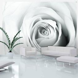 Fotótapéta - Rose charade