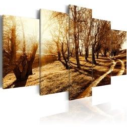 Kép - Amber orchard